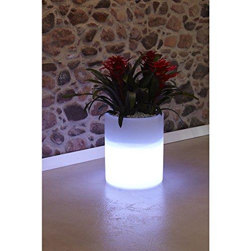 hydroflora 63005200 Nicoli LED-Leuchttopf Echo Light, Durchmesser 35 cm, Höhe 42 cm, kaltweiß - 2