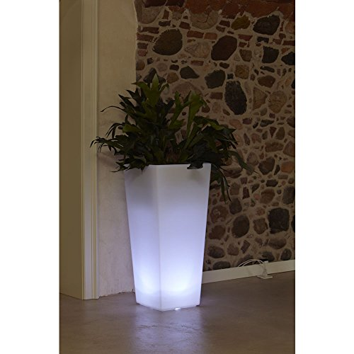 hydroflora 63005505 Nicoli LED-Leuchttopf Eros Light, 30 x 30 x 60 cm, warmweiß - 2