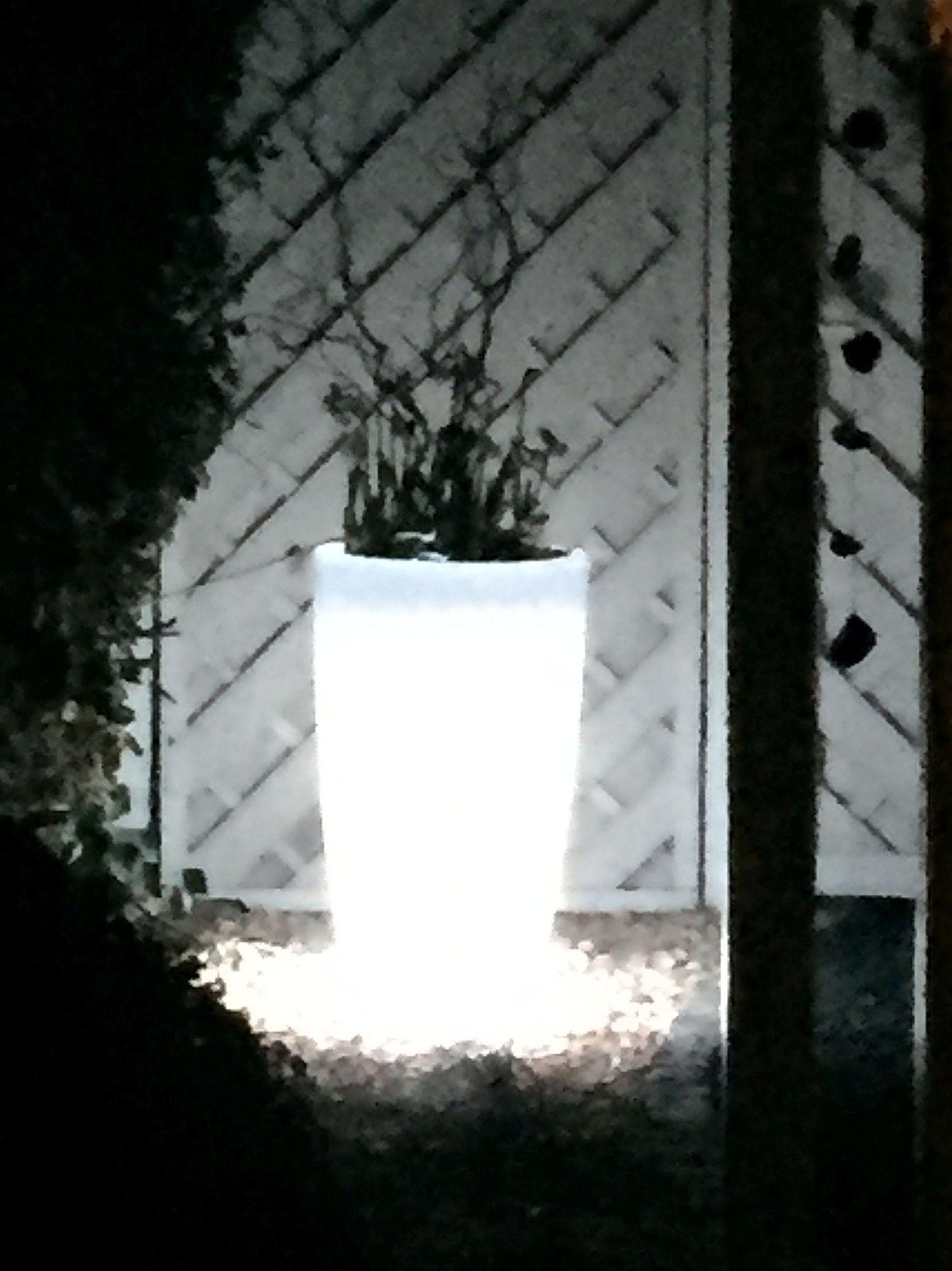 Leuchttopf - beleuchtetet Blumentopf