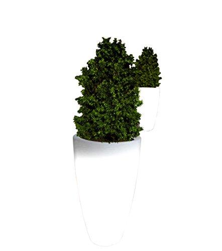beleuchteter blumentopf point garden blumentopf beleuchtet rund finden auf leuchttopf. Black Bedroom Furniture Sets. Home Design Ideas