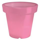 Bloom leuchtendes pflanzgefäß pink